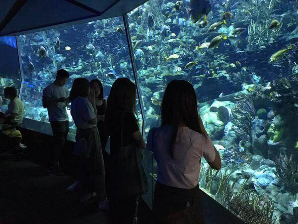 Why Employee Engagement Matters- Links' Trip to Ocean Park_02