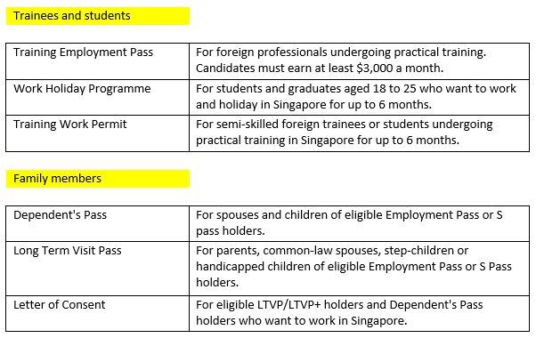 Different types of visas in Singapore for trainees, students and family members.